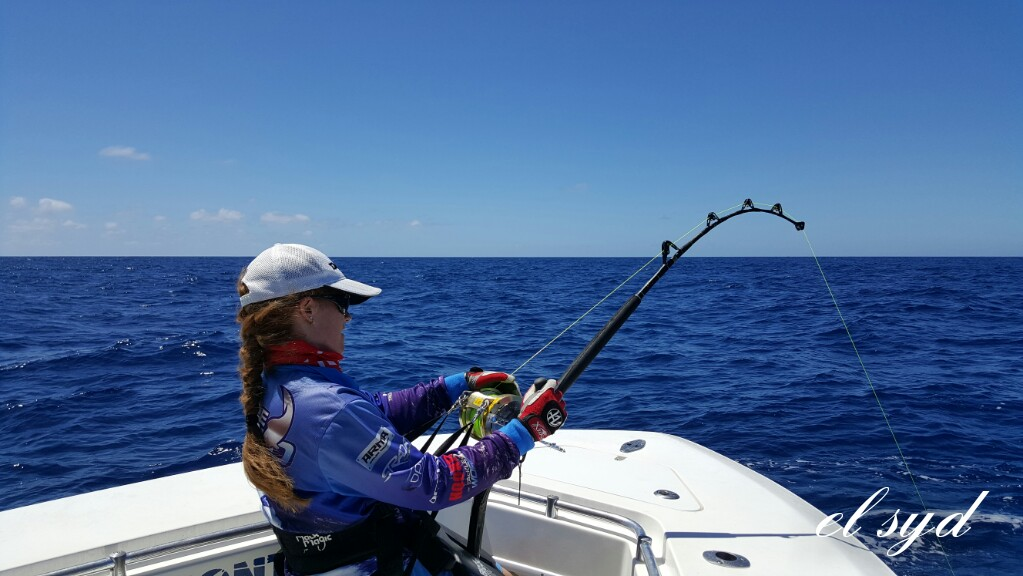 Christmas with peak sportsfishing fishing fishwrecked for Peak fishing times