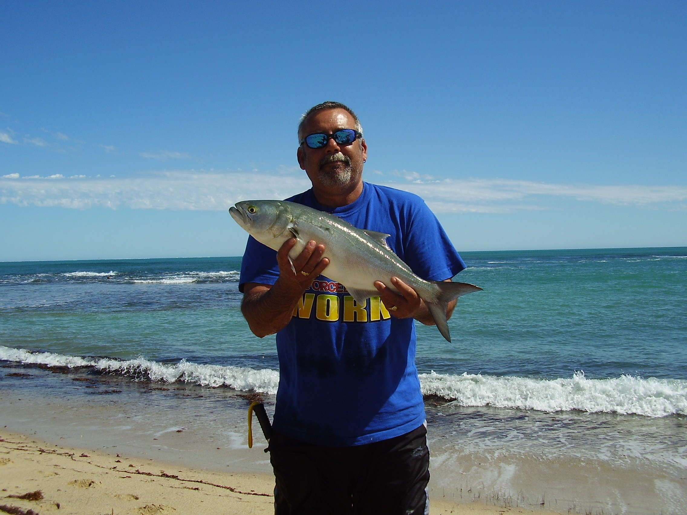 dongara men Dongara dongara is a coastal town located 351 kms north of perth via the beautiful indian ocean drive the twin towns of dongara and port denison are set on the banks of the irwin river which divides the two towns in the shire of irwin.