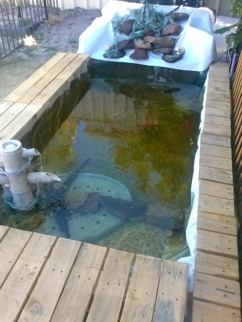 Diy pond fishing fishing wa for Pond made from pallets