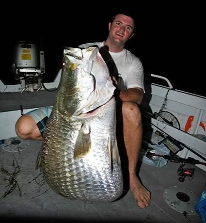 Big barra fishing fishing wa for Can i eat fish everyday