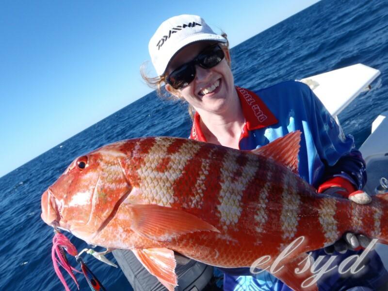 Exmouth peak sports fishing jigging shesh fishing for Peak fishing times
