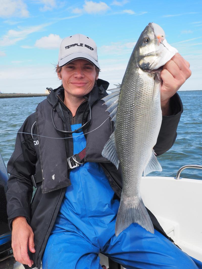 Hunting silver aka the elusive sea bass fishing for Bass fishing washington