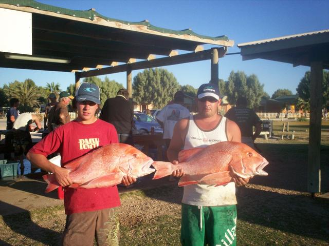 dan south and scotties reds