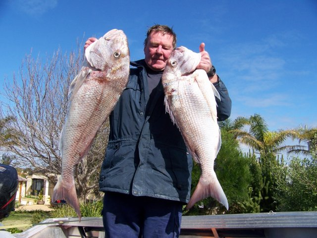 Mandurah Snapper eviction