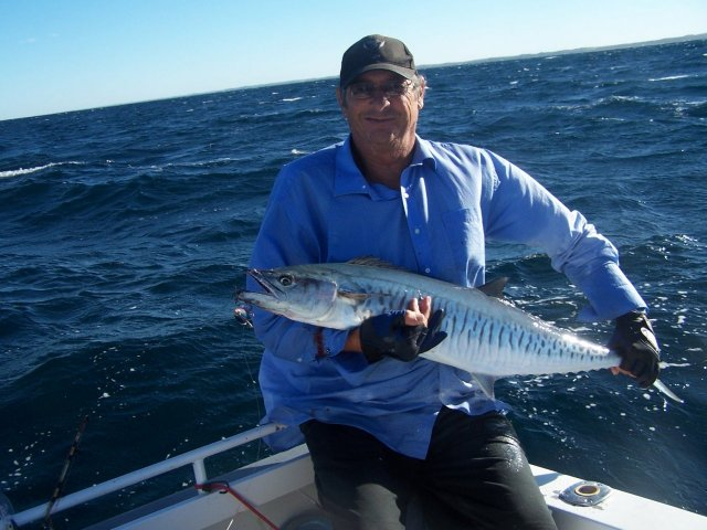 mindarie mackerel mayhem