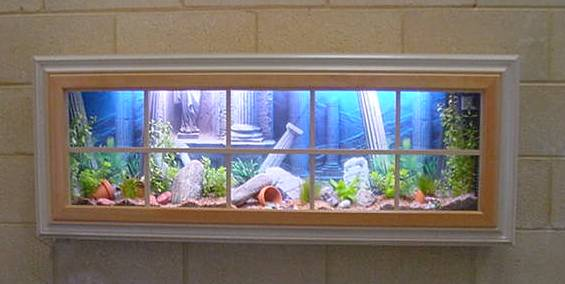 Another Unique Aquarium