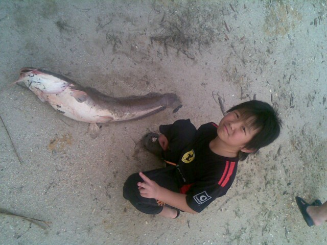 catfish we caught in malaysia