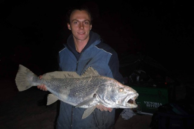 Little Mulloway