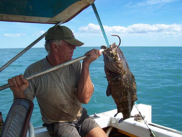 Rock cod fishing fishing wa fishing for Rock cod fish