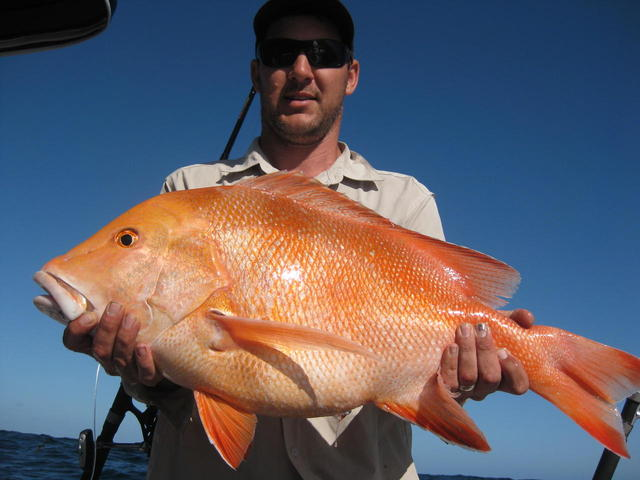 Kalbarri red