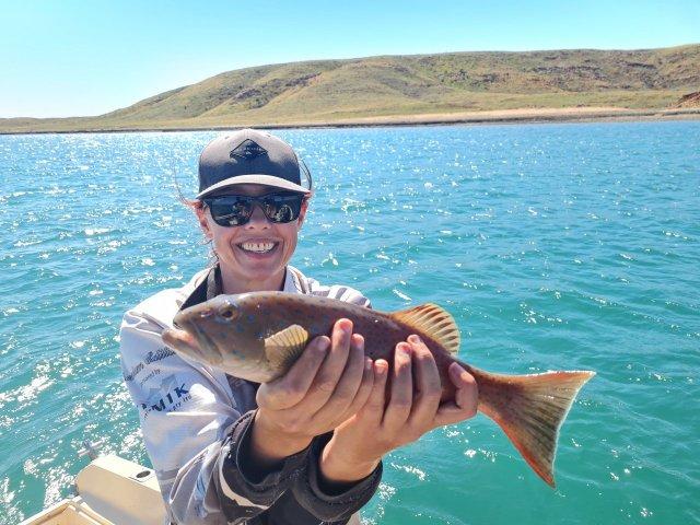 Lil trout