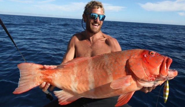 84cm trout
