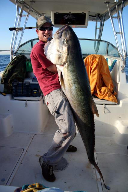 102lb French Amberjack caught by Jeje