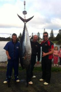 Southern Bluefin Tuna caught on a  lumo Richter Lures Junior Tornado in Lumo.
