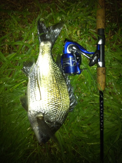 Quick few casts after work