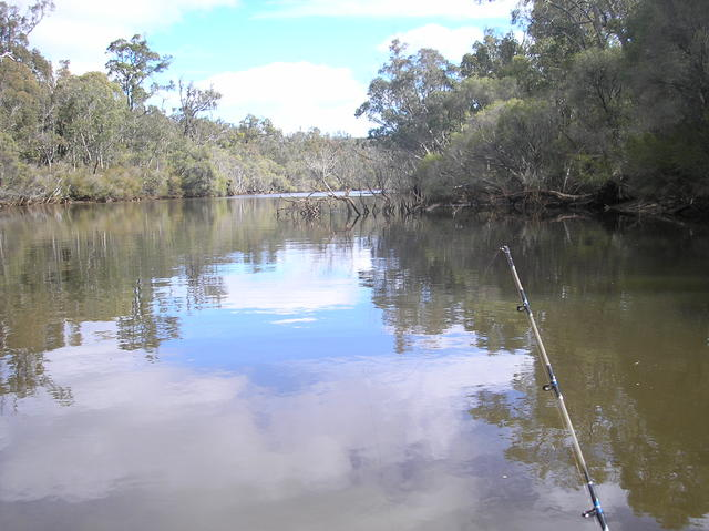 Collie River Redfin fishing