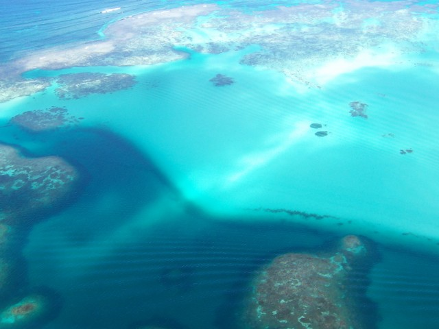 Abrolhos Islands Coral Spawn Event