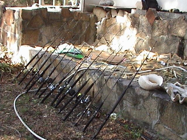 Maximum boat rods