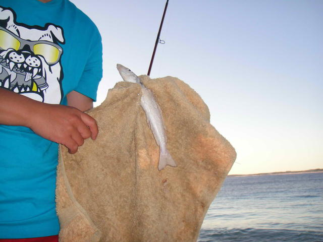 Bremer bay fishing trip
