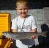 Jack and the Stonka Whiting