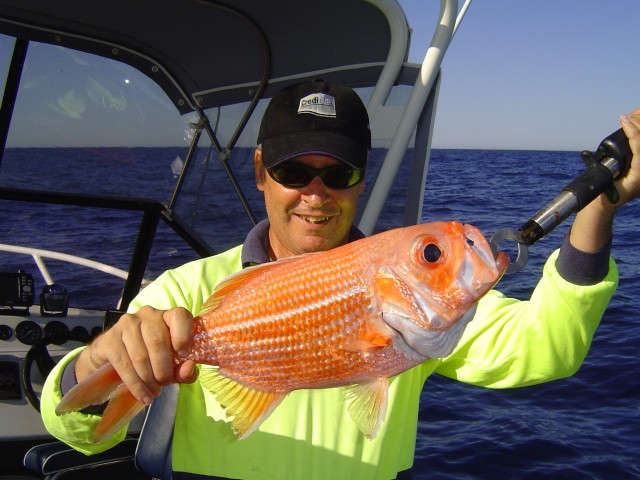 PB Red Snapper
