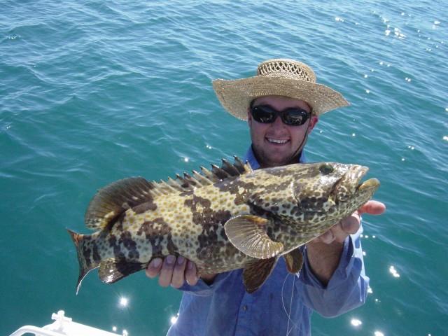Dampier Fish 11/8