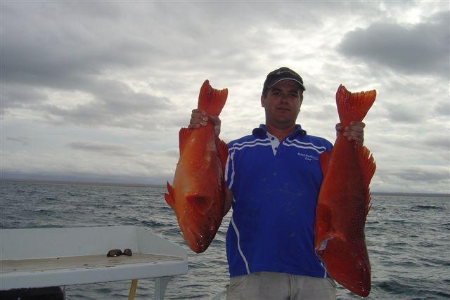 coupla trout