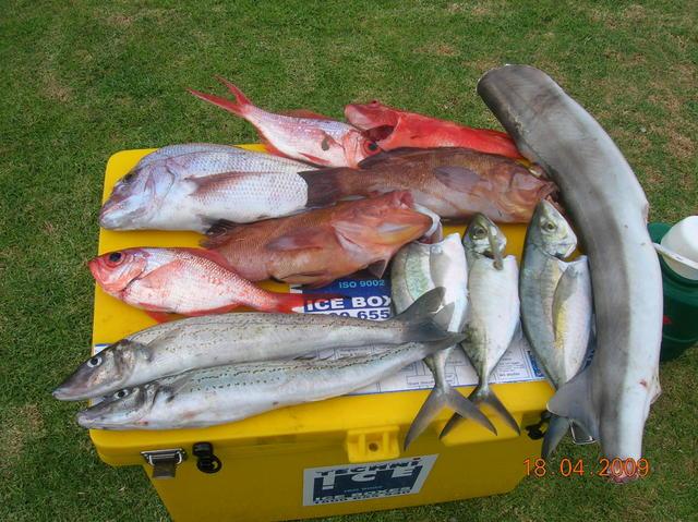 Fishing of Mandurah