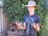 todays 2 redfin