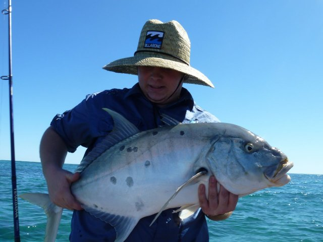 15lb Golden Trevally