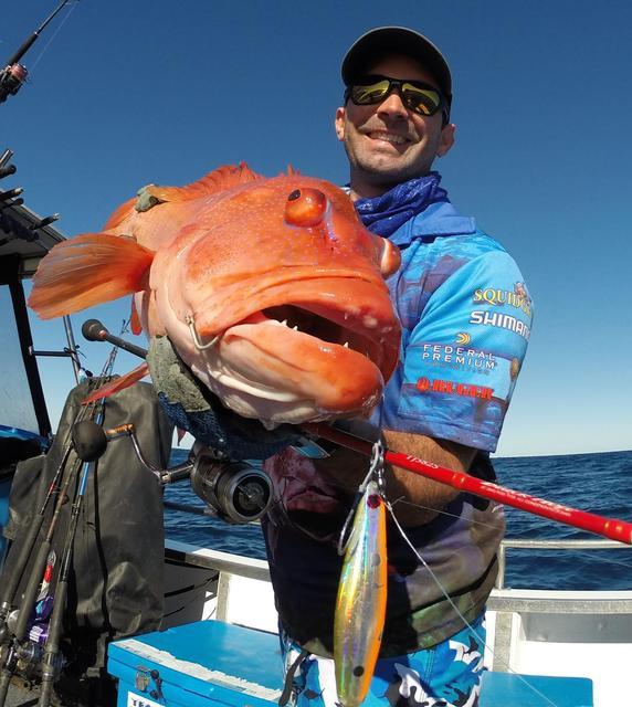 PB Coral Trout