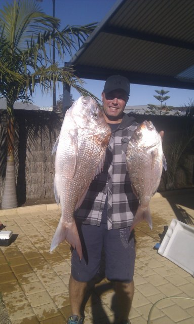 mindarie pinky there on the chew