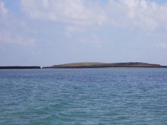 Cohen Island