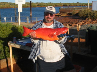 ONSLOW  CORAL  TROUT