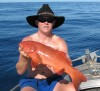 Nice Coral Trout