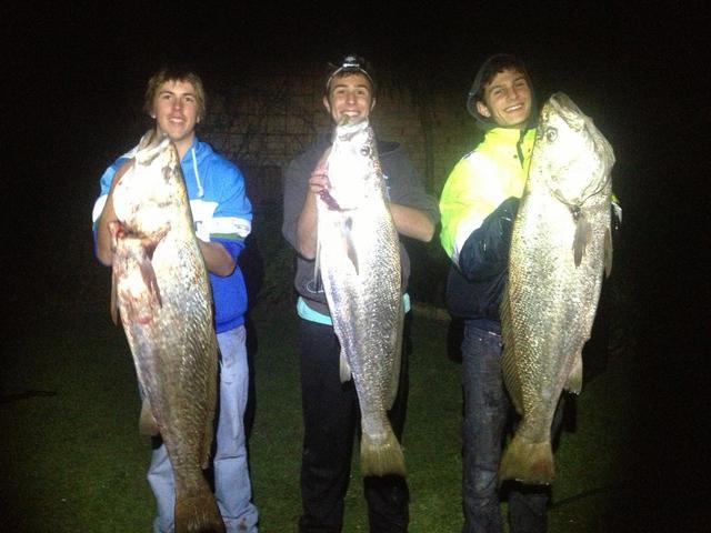 A Nights Fish