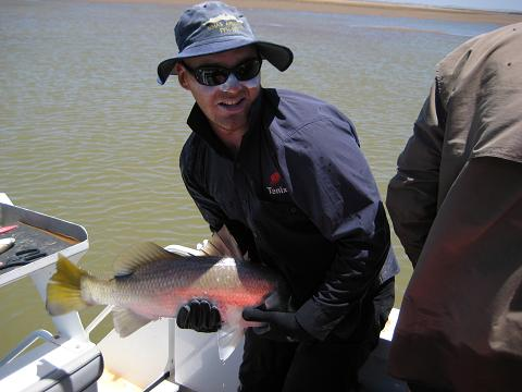 Another Pilbara Barra