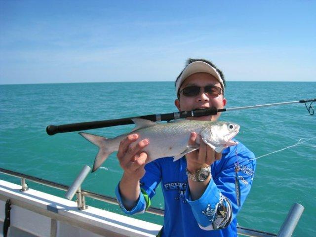 Bluenose salmon on jig