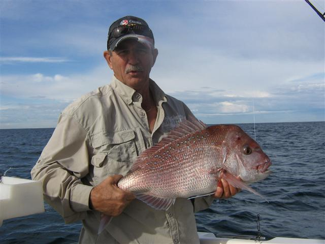 A nice pink snapper