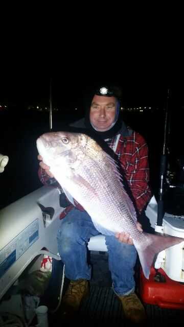 Solo Snapper storm fish