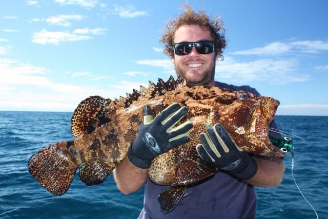 Kelvin8tor's Fat cray eating cod caught on popper