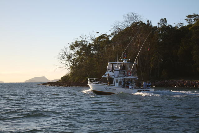 "Port Stephens charter boat ""BROADBILL"""