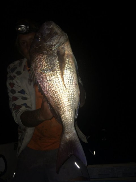Nice fish from tonight! Its a feed