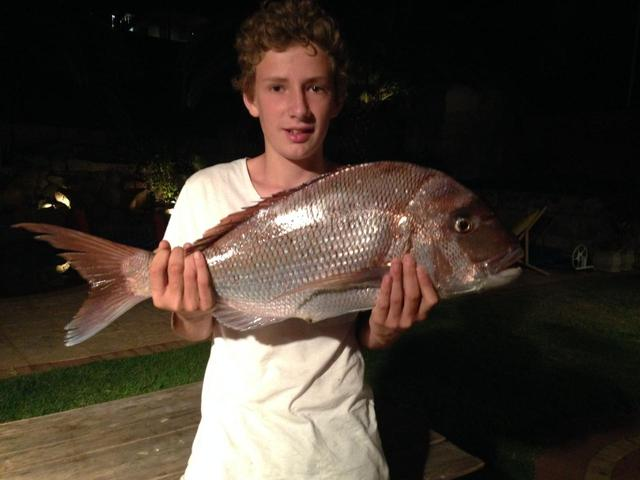 First Snapper
