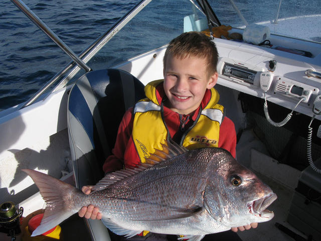 Michaels Pinks Snapper