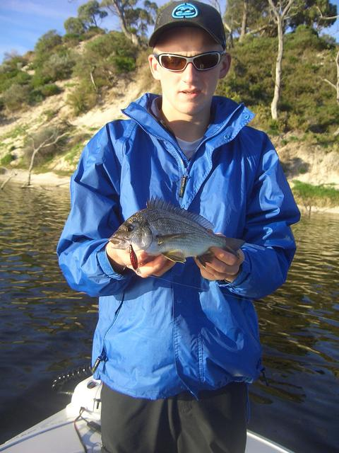Another bream from the Moore