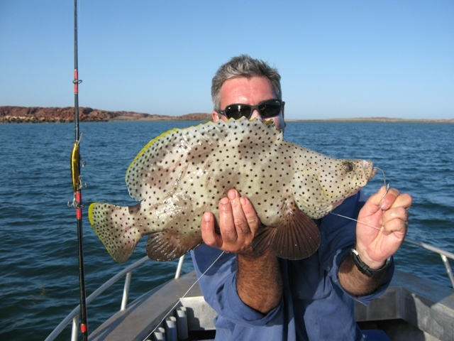 another barra cod