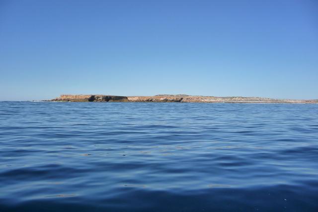 Northern tip of Dorre