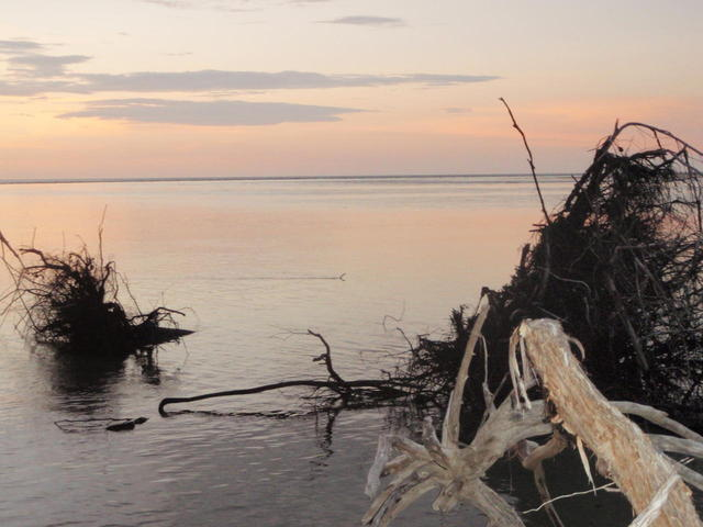 Mouth of Goose Creek Melville Island NT