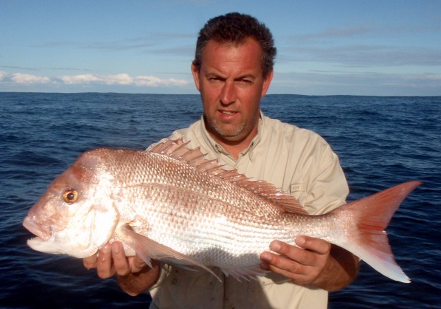 Johnny's Snapper